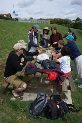 Otro picnic
