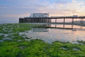 """El alga descubierta por la marea baja es un primer plano perfecto para el """"Southern Pavilion"""" del Worthing Pier."""