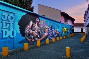 """""""Colores en el callejón"""" Un mural adorna una sección de la Calle de la Escopeta en Cali, Colombia. Esta foto marca el regreso a la práctica fotográfica para mí en el 2016. Tomada en Diciembre durante un paseo por la ciudad."""